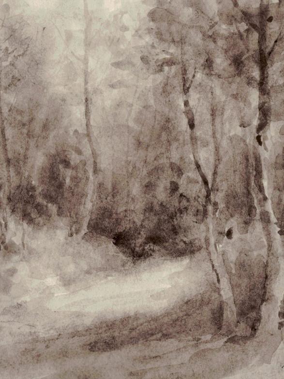 Clairière Lavis, 17 x 17 cm, printemps 2018