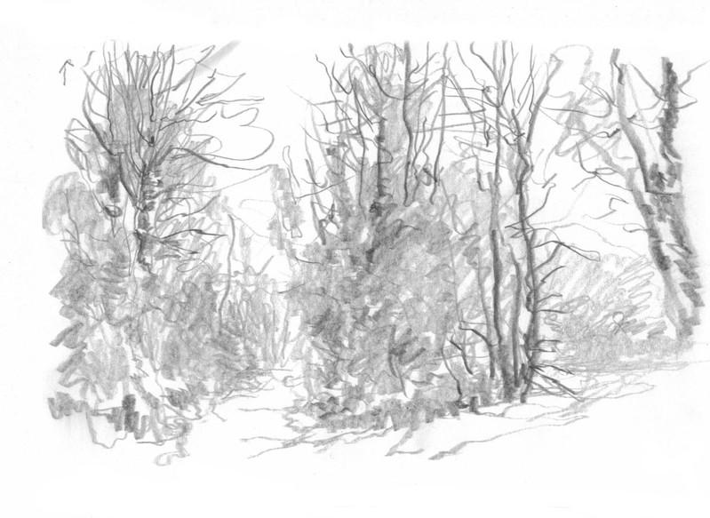 Mine de graphite, 15 x 10 cm