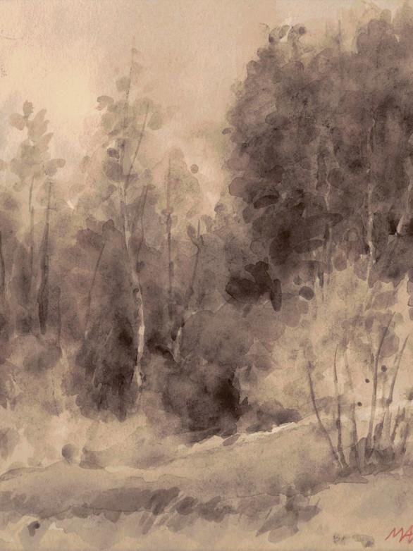 Au coin du bois Lavis, 16 x 17,5 cm, août 2019