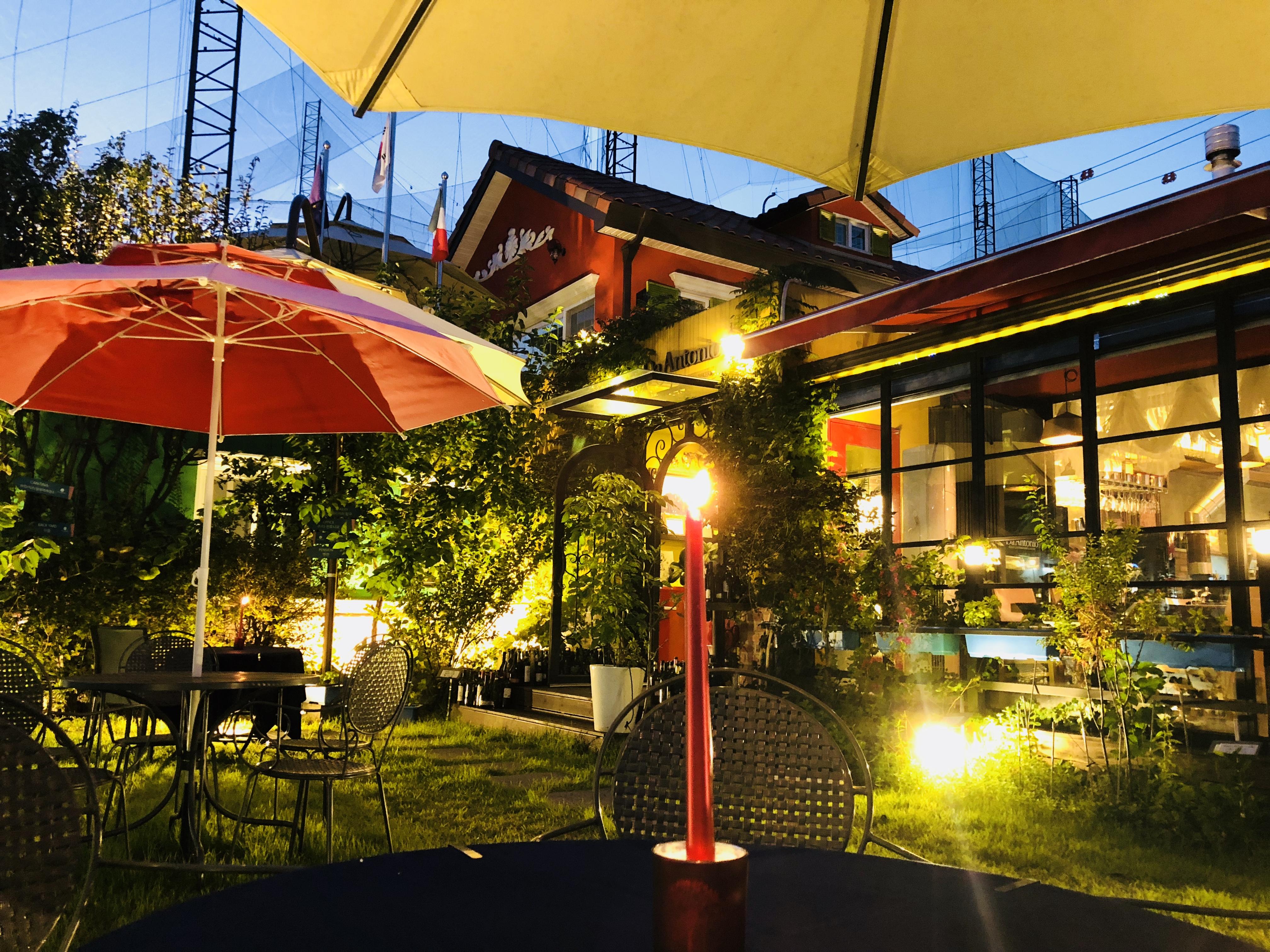 늦은 밤의 야외 정원