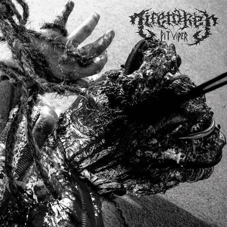 Lifetaker - Pit Viper: Review