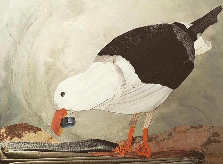 Seagull Eating Lid