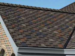 Shingled Roof.JPG