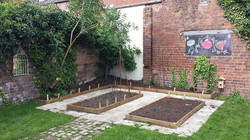 Allotment growing area