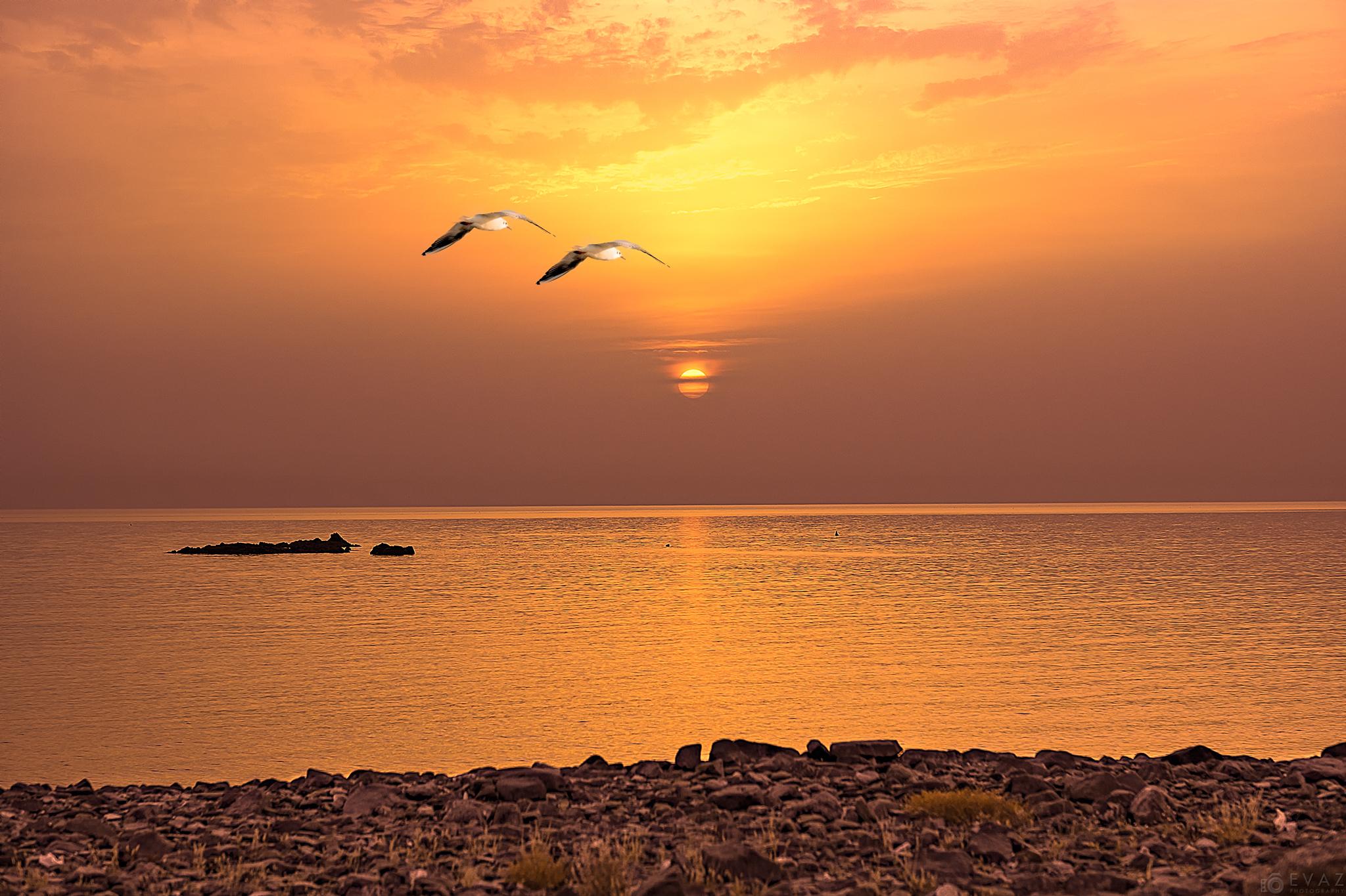 Sunrise at Al Aqah Beach