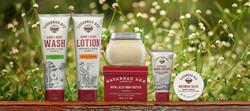 disney-springs-savannah-bee-company-carousel