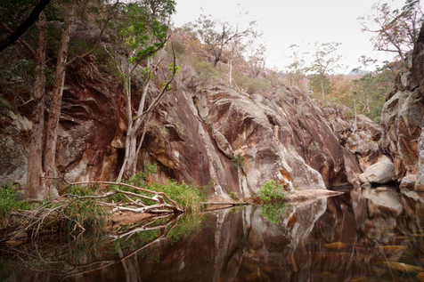 Mt Barney National Park, Queensland, Australia