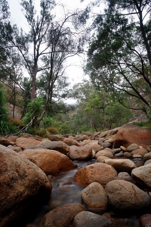 Mt Barney National Park, Queensland, Australia