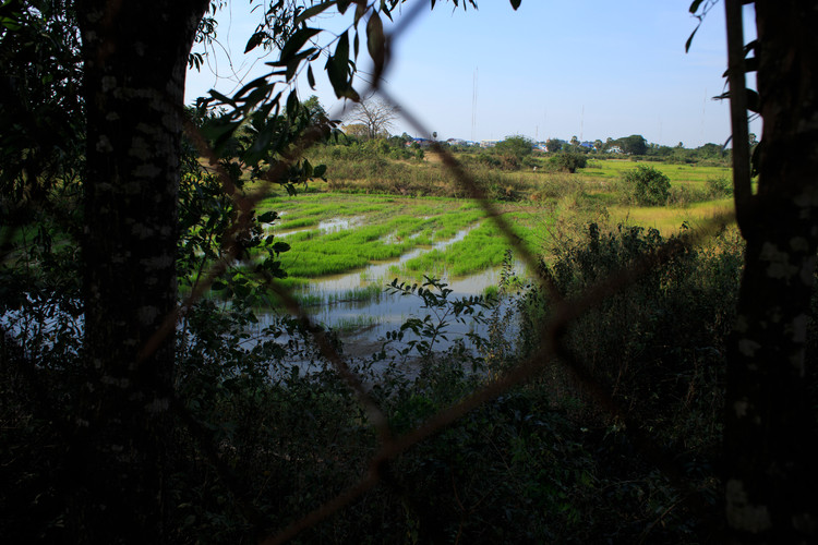 Rice paddies surround the grounds of the Choeung Ek genodical museum, where just forty years prior, hundreds, if not thousands of people were executed and dumped at the site.