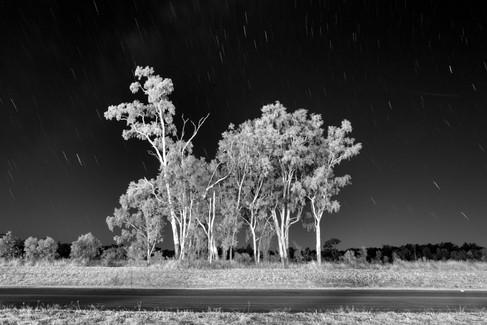 Chinchilla, Queensland, Australia