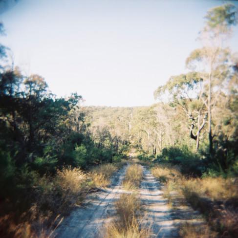 North Stradbroke Island, Queensland, Australia Photographed on Kodak Portra ISO 400 film with Holga 120N camera