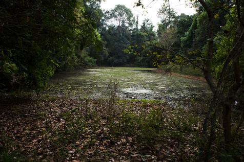 Prasat Kravan, Cambodia