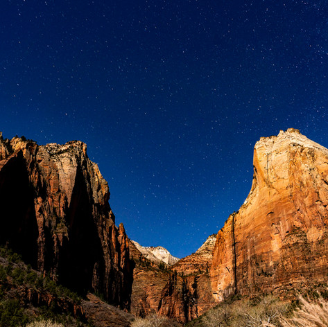 ZION in Color