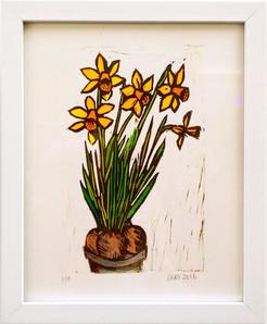 Lot 1. Daffodils