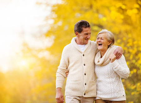 Supporting Wellness for Seniors Holistically