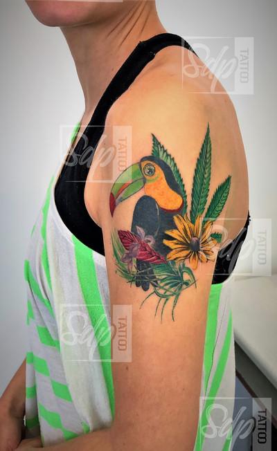 SDP_Tattoo_-_Toucan_coloré_-_.jpg