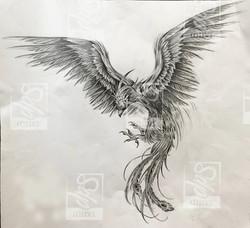 SDP tattoo - Projet Phoenix -