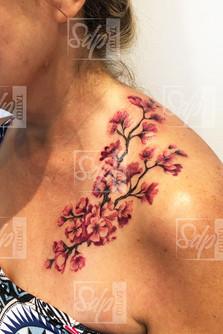 SDP Tattoo - Cerisier -.jpg