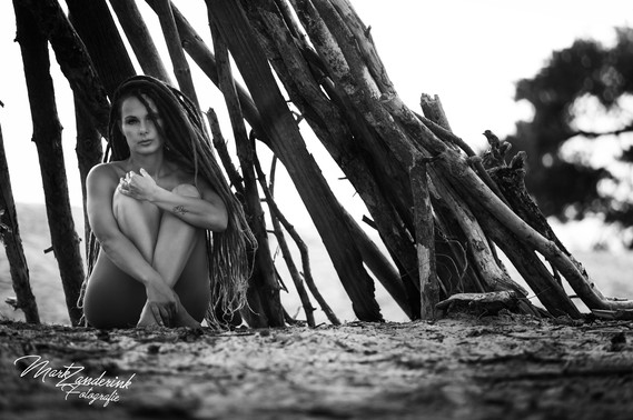 stranded on the beach
