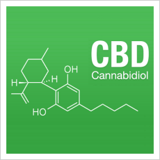 Ever wondered where the high CBD strains of cannabis originated?