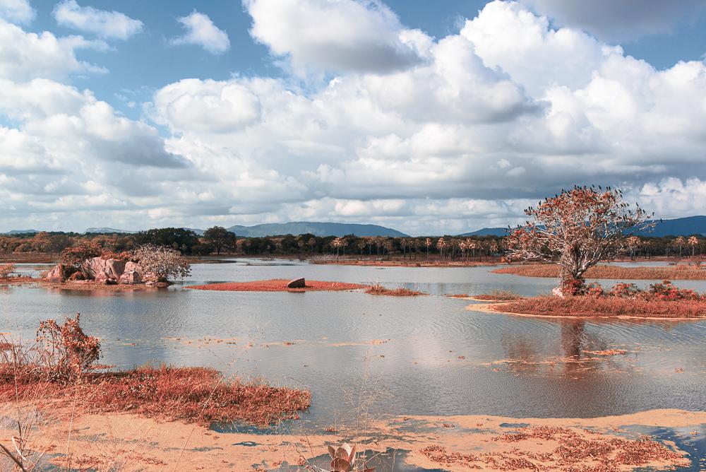 Açude em Sousas - Paraíba