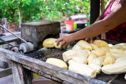 Ralando a mandioca para fazer farinha