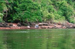 Pescador e roceiro na Ilha de Ingapijó