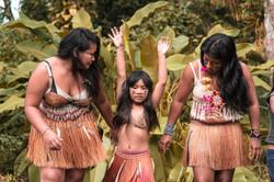 Dança do Tangará