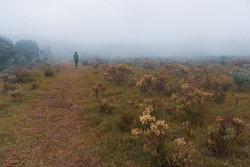 Parque Nacional dos Aparados da Serra