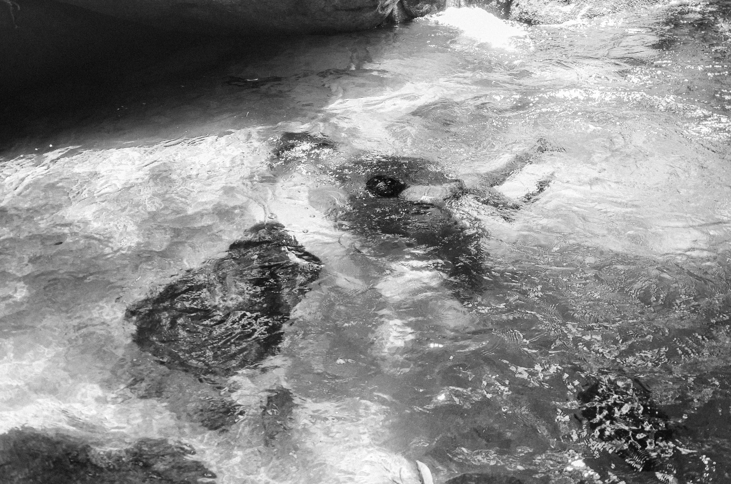 Criança guarani em banho de rio