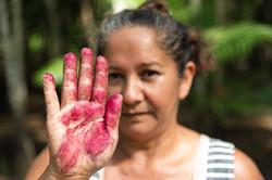A mão da trabalhadora Joana ao debulhar o açaí