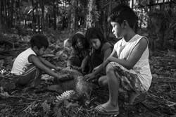 Crianças guarani brincando com o cateto