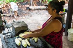 Joana ralando a mandioca para fazer farinha