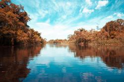 Reflexos no rio, na paleta de Magritte