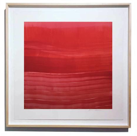 Velvet Red Slip