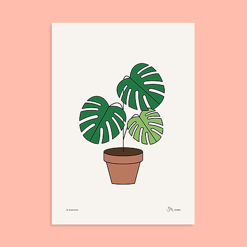 Poster / Monstera / DIN A3