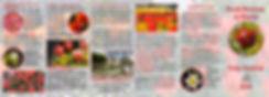 tulip 2020-Page2.jpg