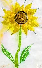 sunflowers 2.jpg