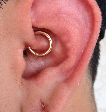 Gold Daith Piercing