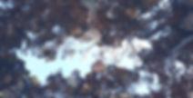 P1020385_edited.jpg