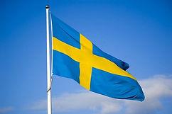 Flag - Sweden (1)_edited.jpg