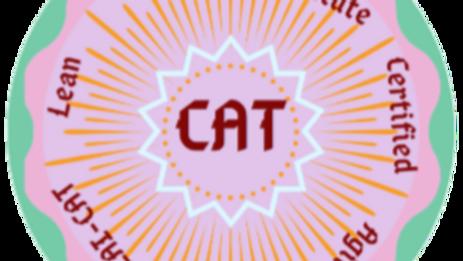 Agile Tester (LAI-CAT)