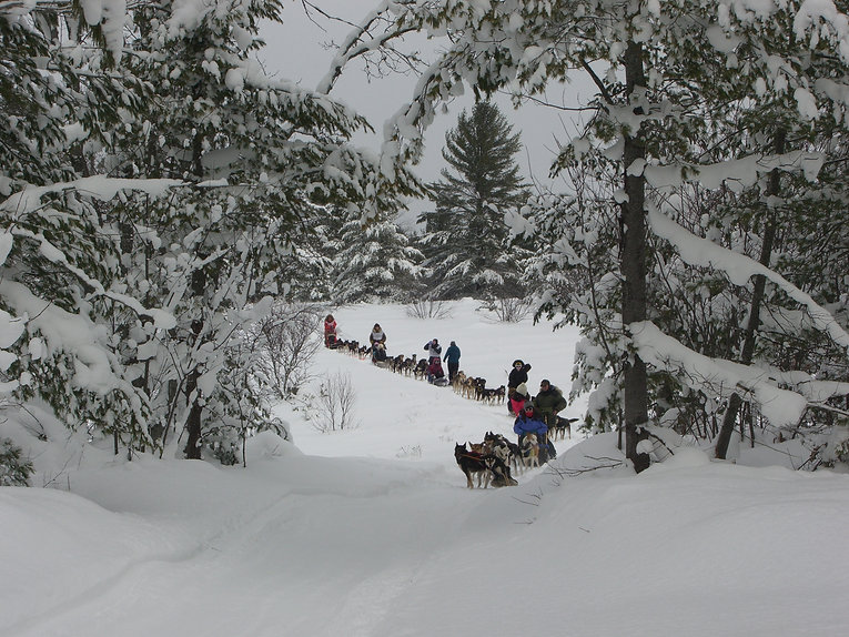 dog sledding upper peninsula Michigan