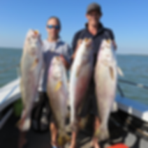Barra & bluewater fishing charters Darwin and Dundee Beach