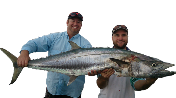 Big mackerel with Dundee Beach Fishing Charters