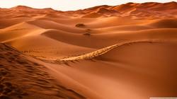 morocco_desert-wallpaper-2560x1440