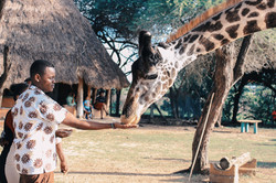 adult-adventure-africa-1670732