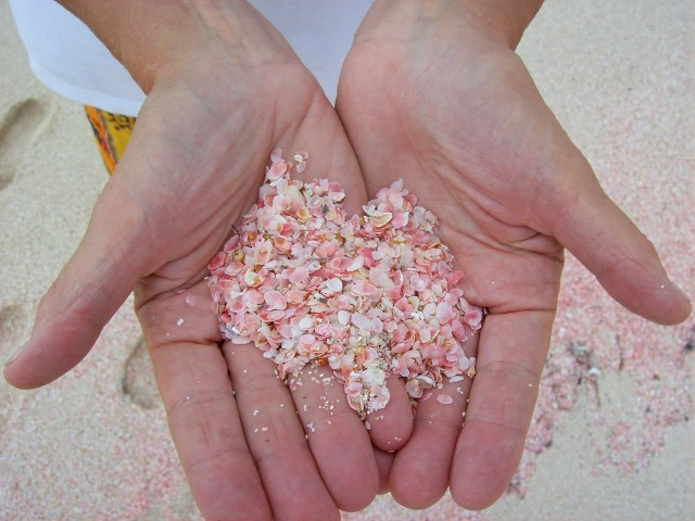 pink-sands-beach-harbour-island-bahamas-hands