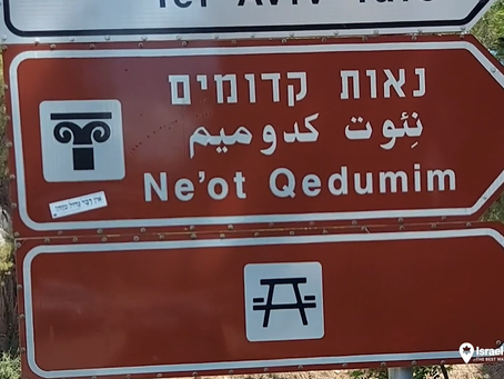 Neot Kedumim: The Park Where Pine and Palm Trees Collide!