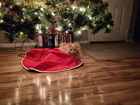 Merry Christmas/Feliz Navidad